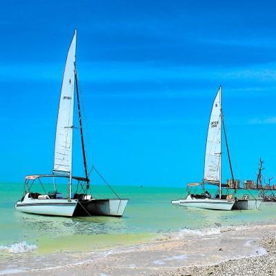 marco island catamaran boat trip