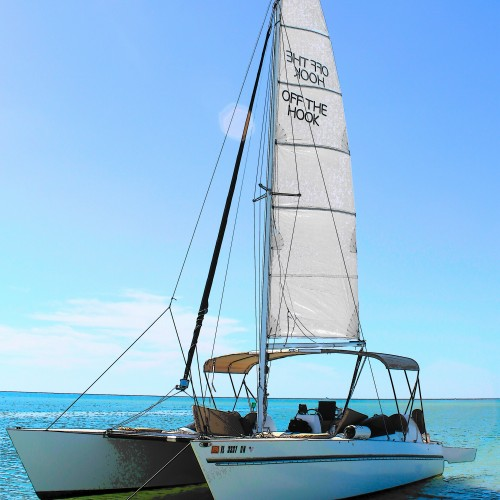 Marco Island Catamaran Shelling