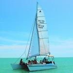Sail shell dolphin tour Marco Island